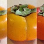 柿を追熟する方法!追熟しない時の対処法、柔らかくなるか、保存方法も