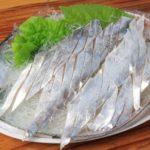 太刀魚の刺身のさばき方(皮も)・切り方・作り方!炙りの食べ方、寄生虫も