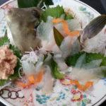カワハギの刺身のさばき方と作り方!味・旬・食べ方や肝の取り方も