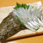 マゴチの刺身の切り方・さばき方!味はどうか、食べ方のおすすめも