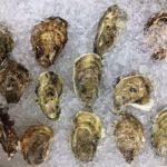 牡蠣の保存方法!冷凍・冷蔵の期間、解凍方法や腐る見分け方も