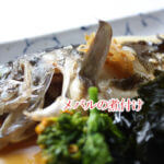 メバルの味は?どの魚に似ているか、食べ方のおすすめやカサゴとの違い、旬の時期も