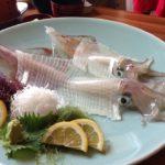 スルメイカの刺身のさばき方と切り方!動画での解りやすいやり方や美味しい食べ方も