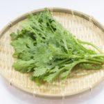 春菊は生で食べられる?食べ方や旬はいつか、保存方法や賞味期限も