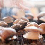 ハマグリが加熱しても開かないのは食べてもは大丈夫?原因や砂抜き失敗なの?